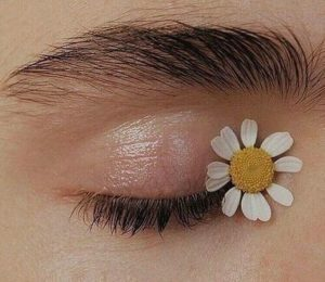 Ромашка для глаз
